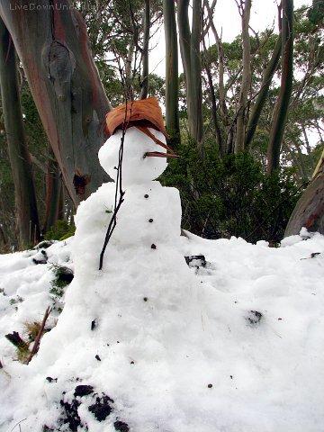 Bałwan. Mount Baw Baw, Wiktoria, Australia