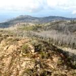 Trekking: Wypalone lasy Mount Buffalo