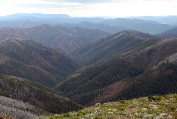 Great Alpine Road, Wiktoria, Australia