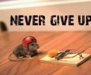How to be Successful in Life : Think Different and Keep Pushing On