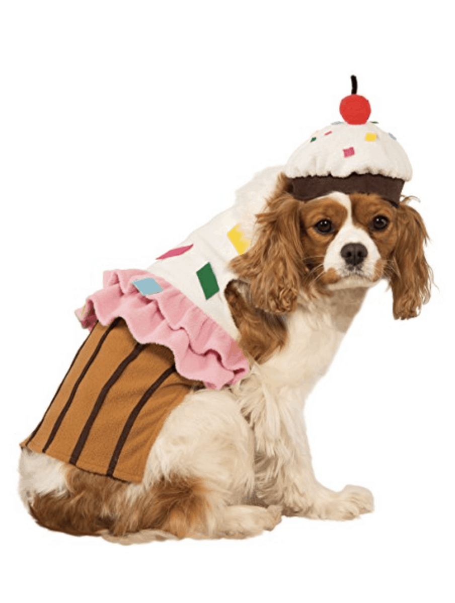 Halloween Dog Costumes Under $20