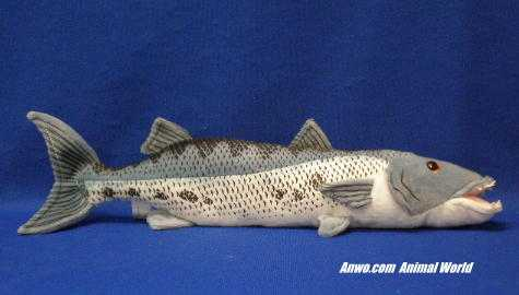 Barracuda Plush Stuffed Animal Fish Toy at Animal World