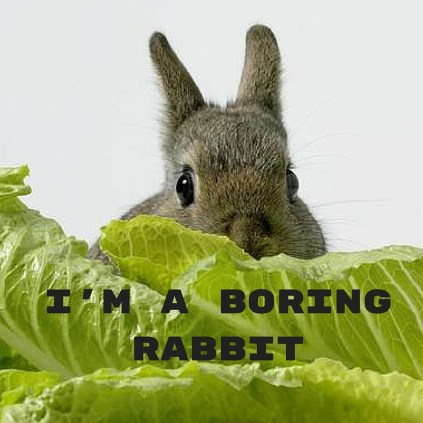 I'm a boring rabbit