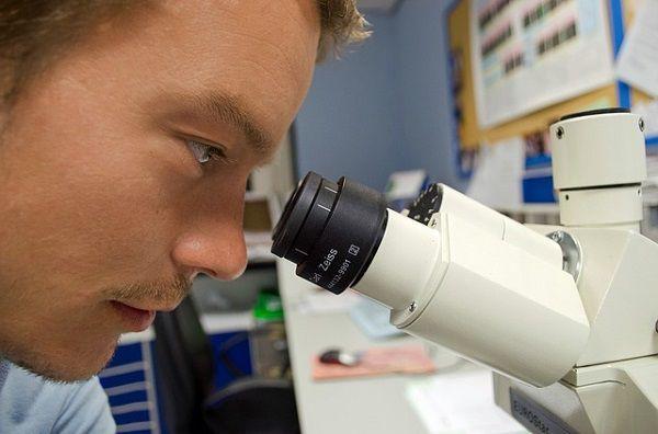顕微鏡をのぞく研究者