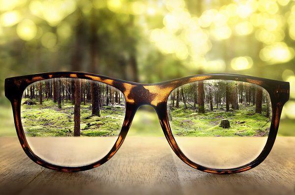 机に置かれたメガネ越しに見える森
