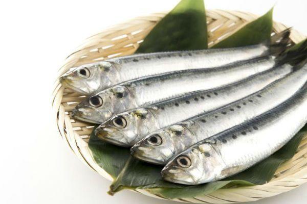青魚のオメガ3脂肪酸
