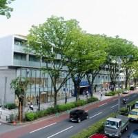 【渋谷・表参道・青山】おしゃれなレストランでディナー♡デート・誕生日・記念日・オトナ女子会♪