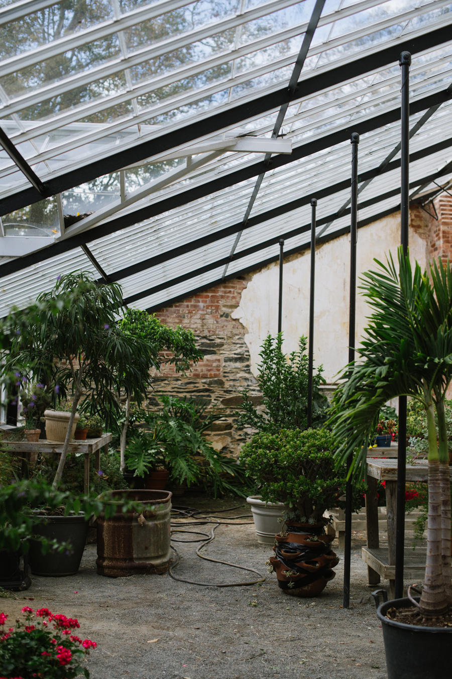 virginia greenhouse
