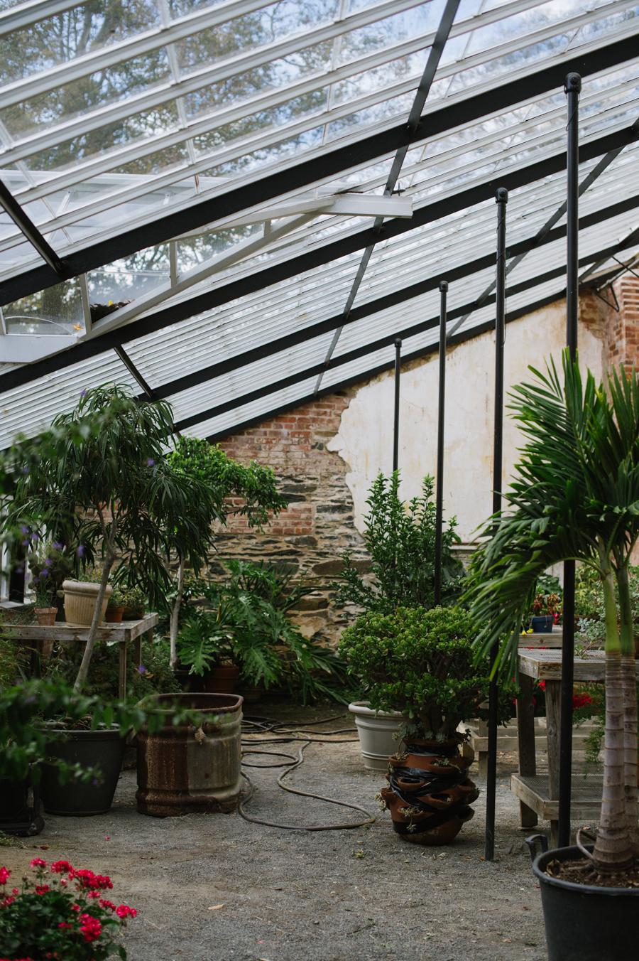 virginia greenhouse