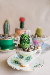 DIY-Teacup-Gardens-9