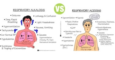 Difference Between Respiratory Acidosis and Respiratory Alkalosis