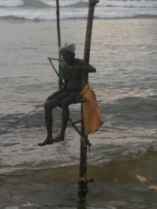 Ahangama stilt fishermen Sri Lanka