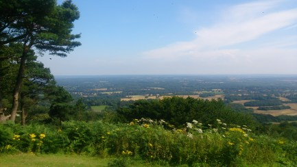 The view from the top of Leith Hill
