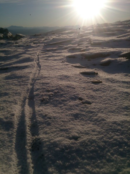 My tracks through the snow on approaching the summit of Skaugtuva