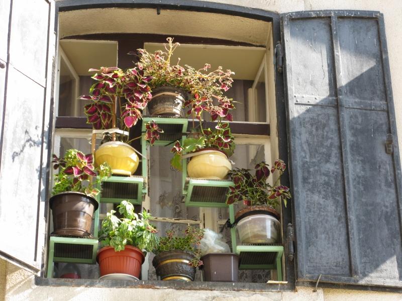 Sarajevo window box