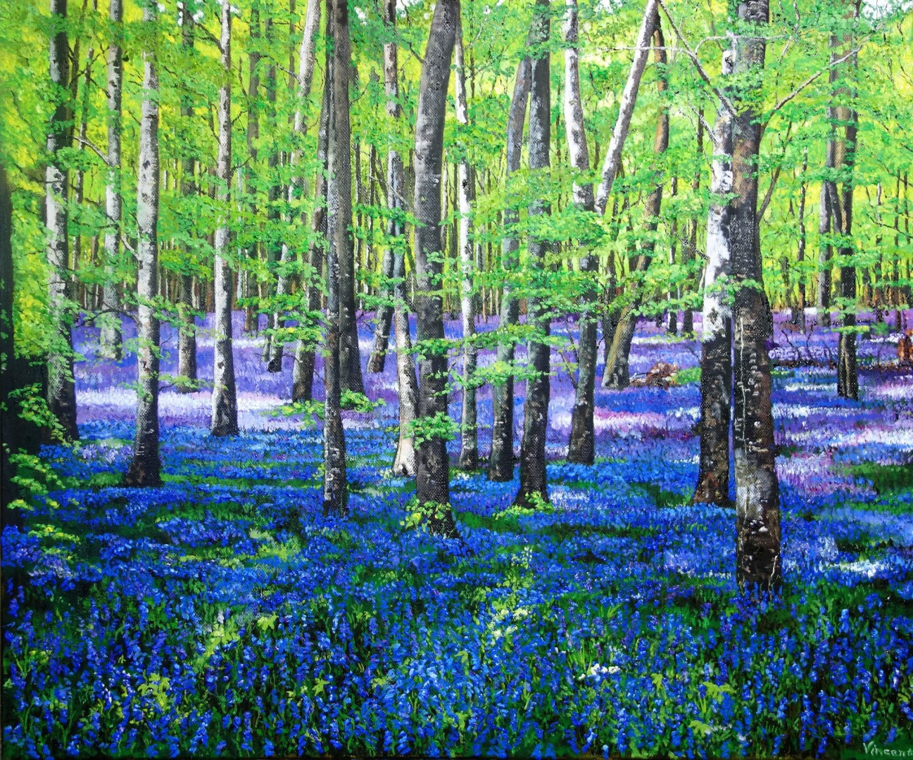 Bluebell Meadow, by Vincent Smith