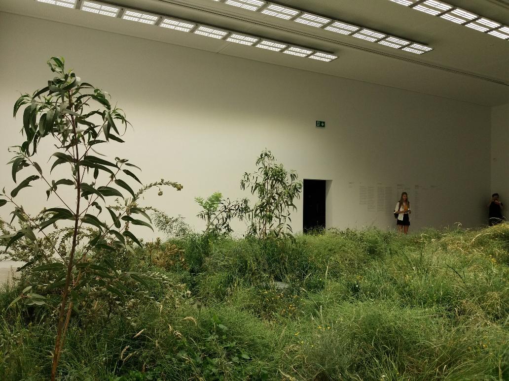 Australian pavilion at the Biennale