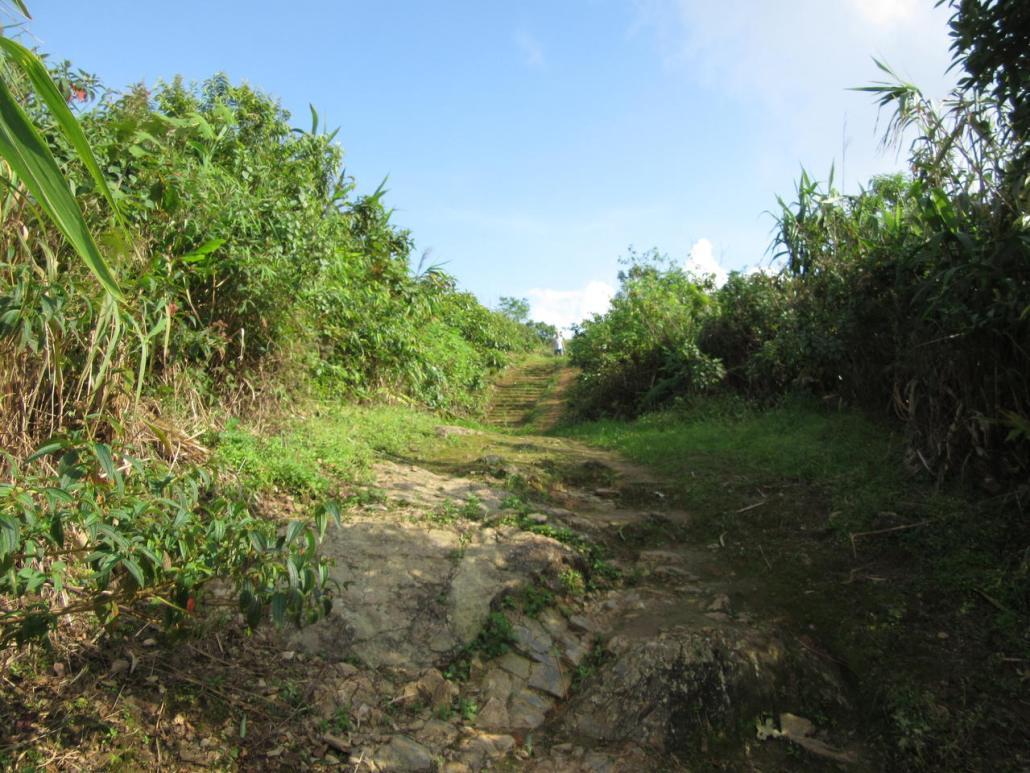 Path up to Phu Chi Fa