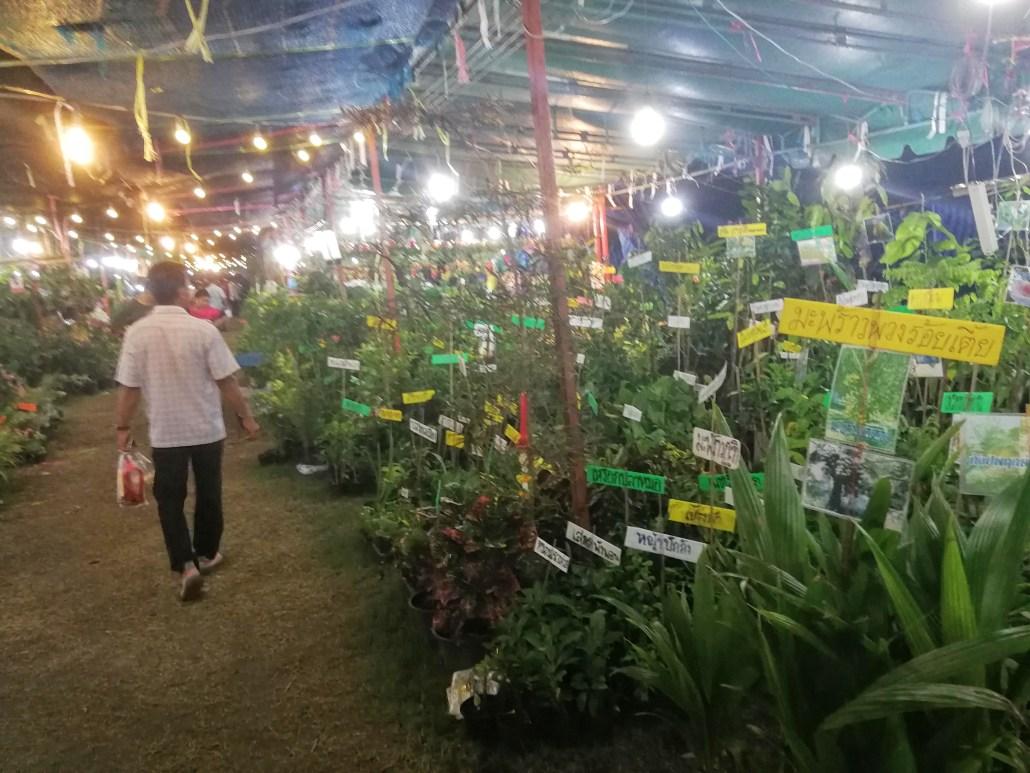 Garden Shops kanchanaburi night market