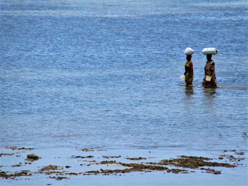 African women walking in water Zanzibar
