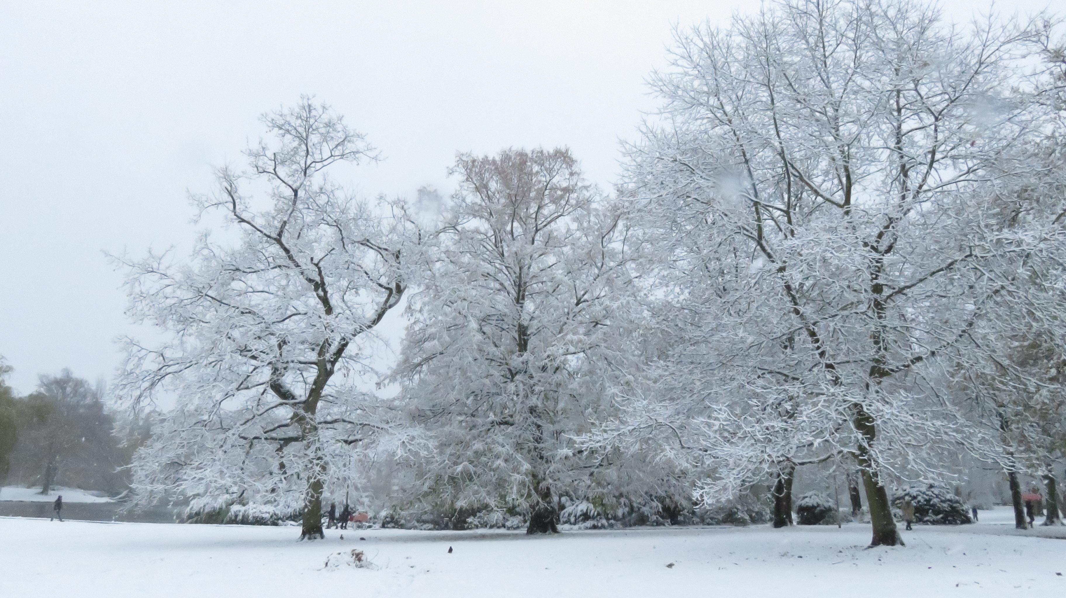 Neige à Kiel, Schrevenpark