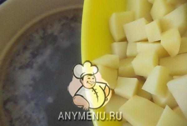 borshh-ukrainskij