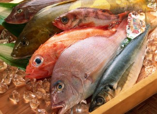 zamorozhennaya riba
