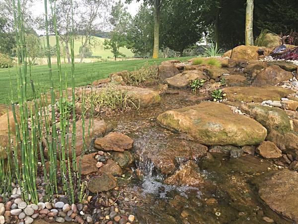 Wildlife Pond Construction