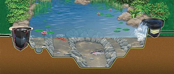 How Do You Build Pond