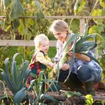 The Secrets To Growing Your Own Food Garden At Home