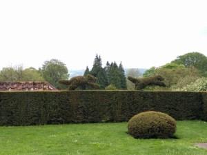 Amazing topiary