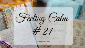 Feeling Calm 21