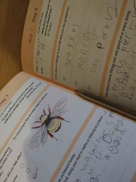 Inside a journal
