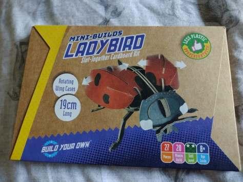 BYO Mini Build Ladybird