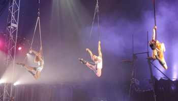 Circus Lates