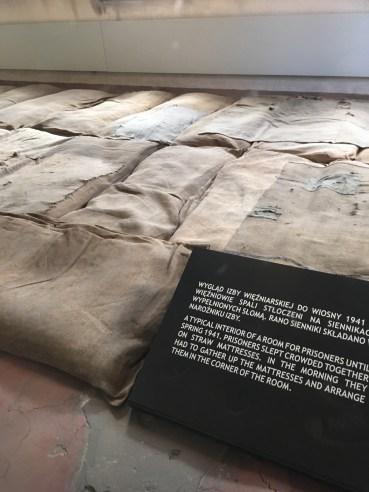 Conditions in Auschwitz; Eye Opener