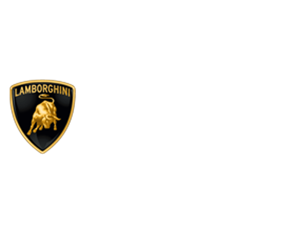 Houston Executive Car Service & Limousine