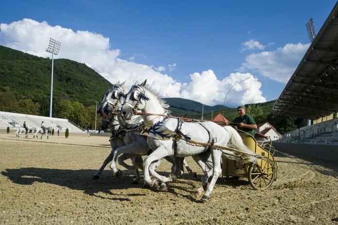 Négyes fogat az új lipicai lovasközpontban Szilvásváradon a megnyitó előtti napon