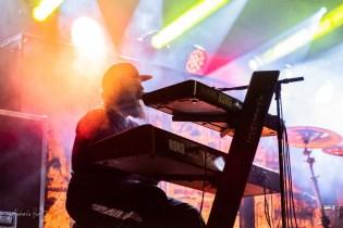 Kowalsky meg a Vega koncert (16)