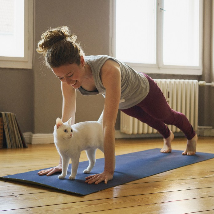 Smiling woman practicing plank position over white cat on exercise mat at home