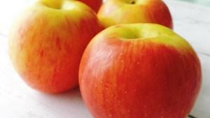 リンゴ カロリー 栄養 冷凍保存