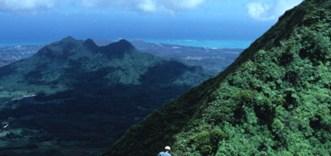 Diversification in Hawaiian Dubautia laxa