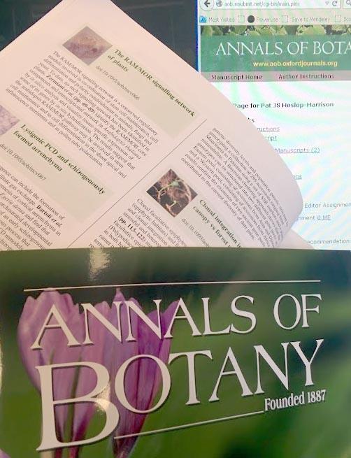 Deputy Managing Editor Job for Botany PhD at Annals of Botany – Managing Editor Job Description