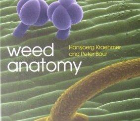 WeedAnatomy-Cover