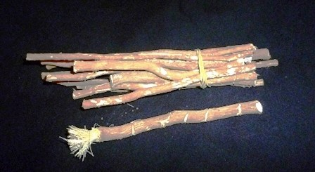 Miswak used for dental health. Photo: Iqbal Osman / Wikipedia
