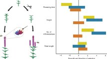 Effect of pollination and herbivory treatments on the strength and direction of selection on several floral and inflorescence architecture traits in Lythrum salicaria