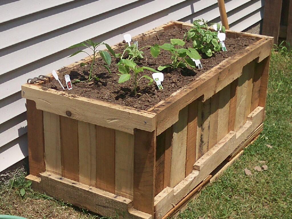 Ao Community Gardens  Grow Food Give It Away