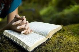 Você tem uma Bíblia? Se não, deseja adquirir uma novinha em folha? Que valor dá à Bíblia?