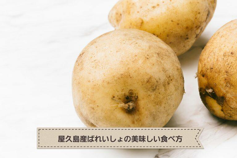 じゃがいものおいしい季節。屋久島産ばれいしょを使って作ってみたよ!~塩麹肉じゃが~