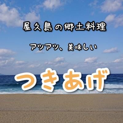 屋久島の家庭料理  ファイル2  <つきあげ>